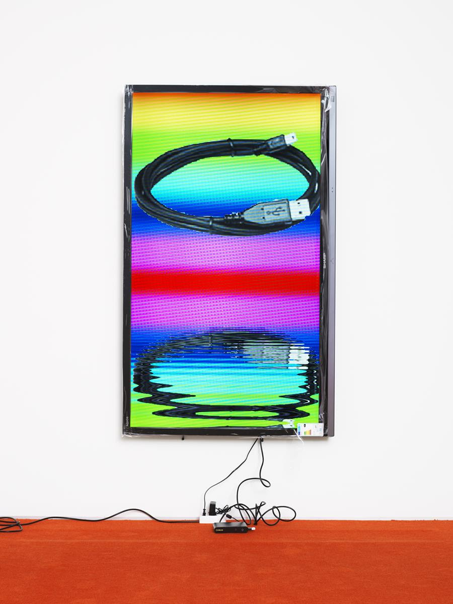 Cory Arcangel, <em> Blackberry / Lakes</em>, 2013