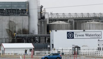 Iowa finds no violations at Tyson plant with deadly outbreak