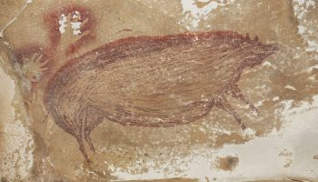 Archaeologists Find 45,500-Year-Old Pig Painting in Indonesian Cave – ARTnews.com