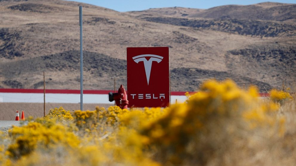 Russian man pleads guilty in Nevada to plot to extort Tesla