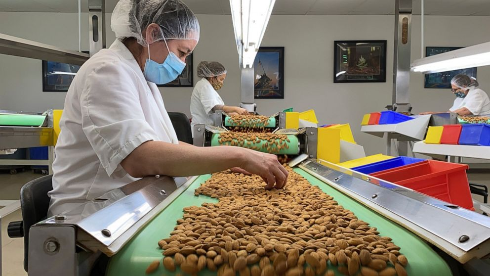 California drought takes toll on world's top almond producer